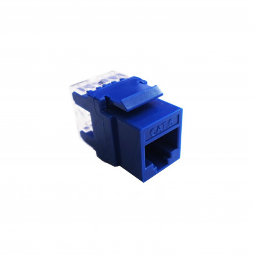 CATEGORY 6 RJ45 MODULAR JACK (Blue)